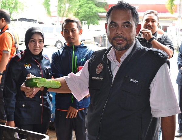Mohd Wazir showing the cucumber that is believed to have been partially eaten by rats at the mini market.
