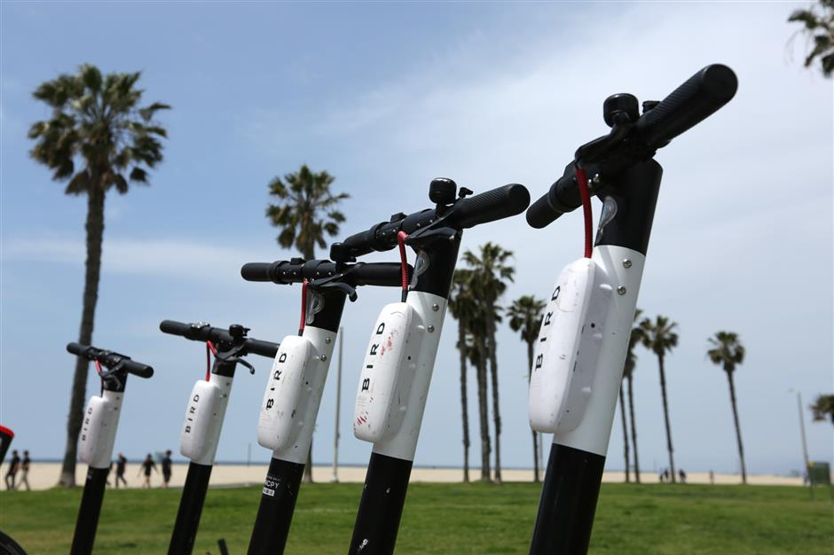 VENICE, CA - MAY 2, 2019: Bird scooters are lined up near the beach in Venice. (Katie Falkenberg/Los Angeles Times/TNS)