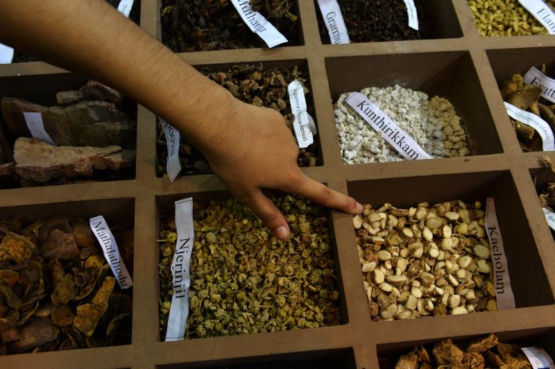 India seeks to cash in on global demand for ancient remedies | The