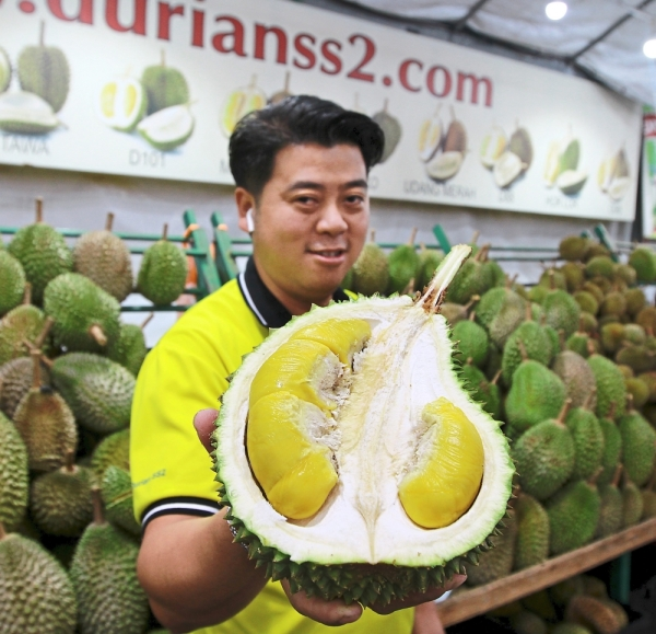 The Musang King variant is currently more affordable with some stalls selling them for as low as RM28 per kg.