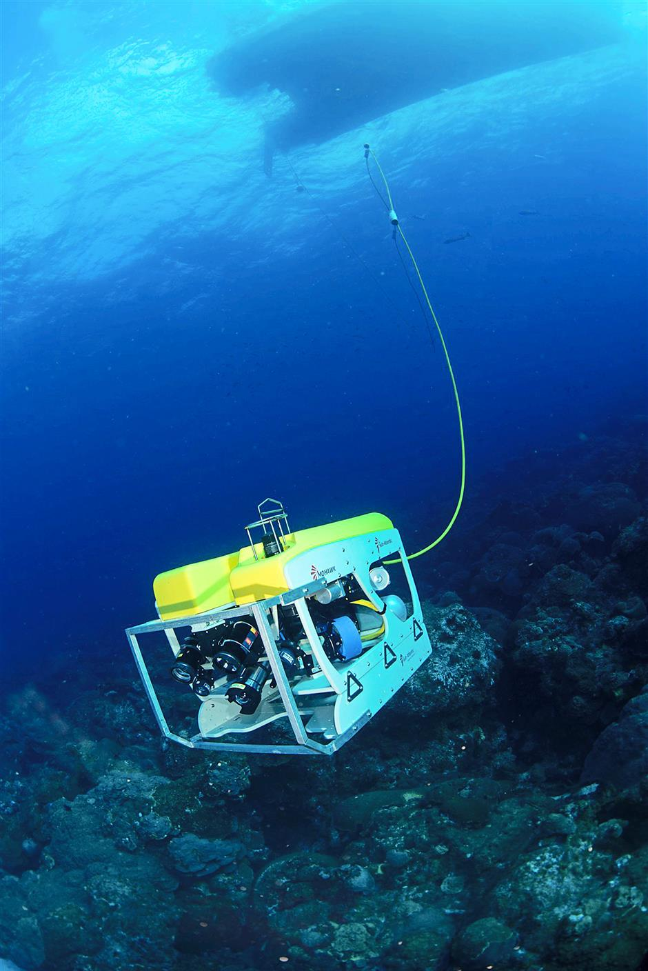 Scientists will use a remotely operated vehicle (ROV) to learn more about the structure of the sea floor more than 330m deep in Dry Tortugas.