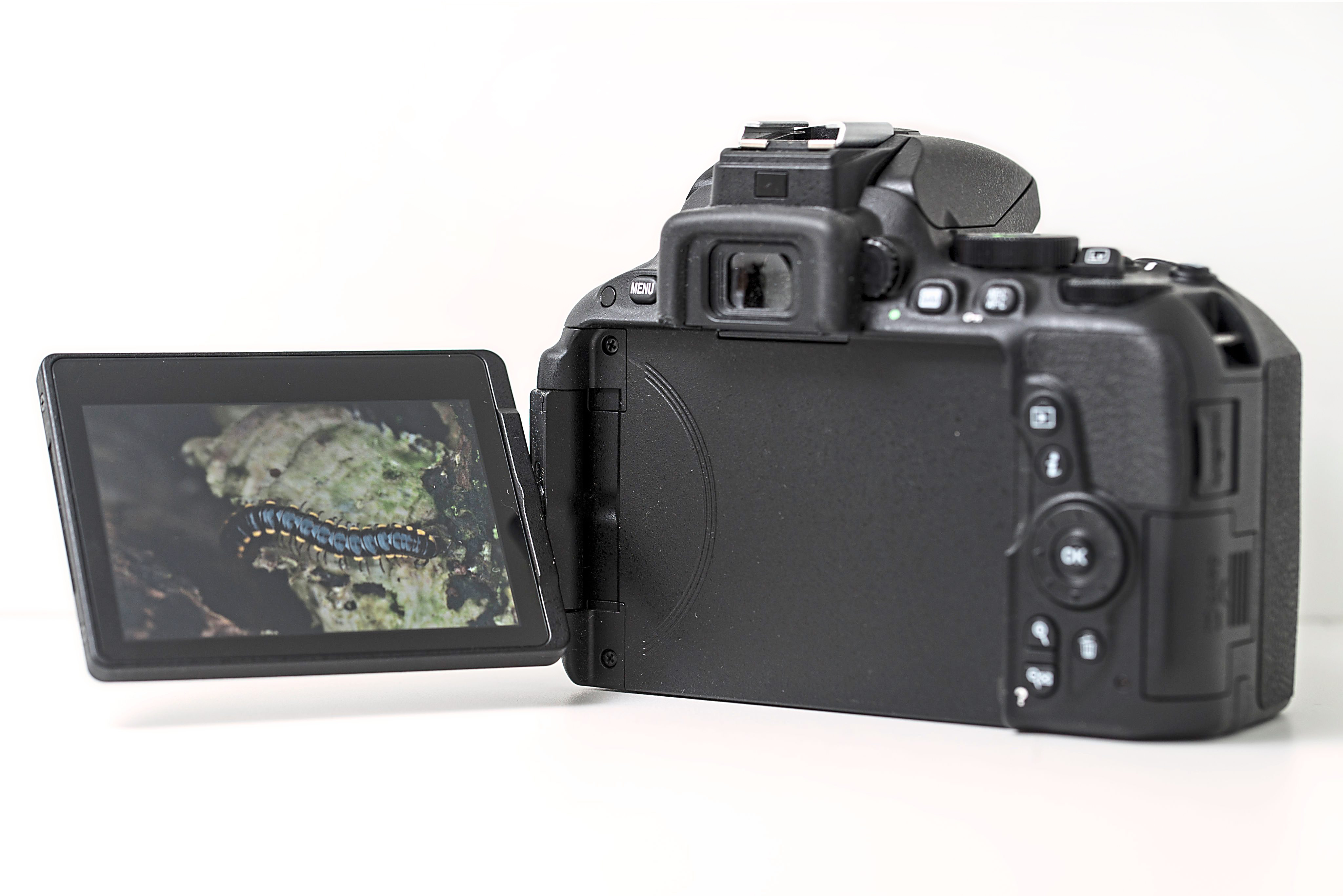 The fully articulating touchscreen LCD on the Nikon D5500 makes shooting videos and taking selfies much easier.