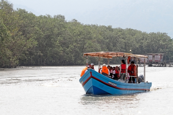 Rustic charm: A boat taking visitors on a tour of the mangrove swamp. Inset: Tour guide Wong Nyen Keow (left) briefing visitors on the meromictic lake located in the Penang National Park.