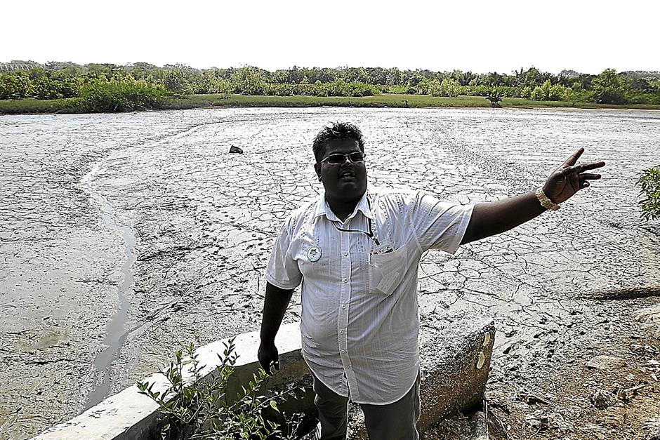 Kuala Selangor Nature Park manager Michael Isthyben Sawairnathan showing the mudflats which waterbirds normally flock to feed. NORAFIFI  EHSAN/ The Star