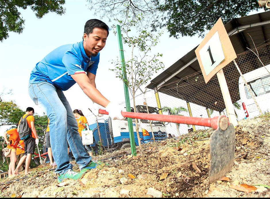 Keen to contribute: One of the volunteers preparing to plant a sapling.