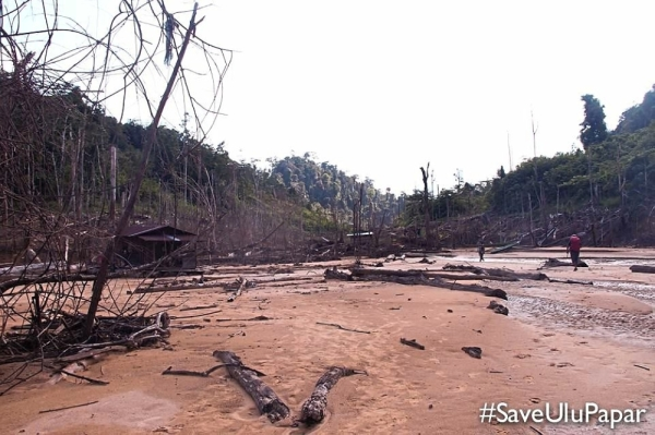 Barren future: The dead Sungai Win after the Bakun Dam was built, which has left the community high and dry.