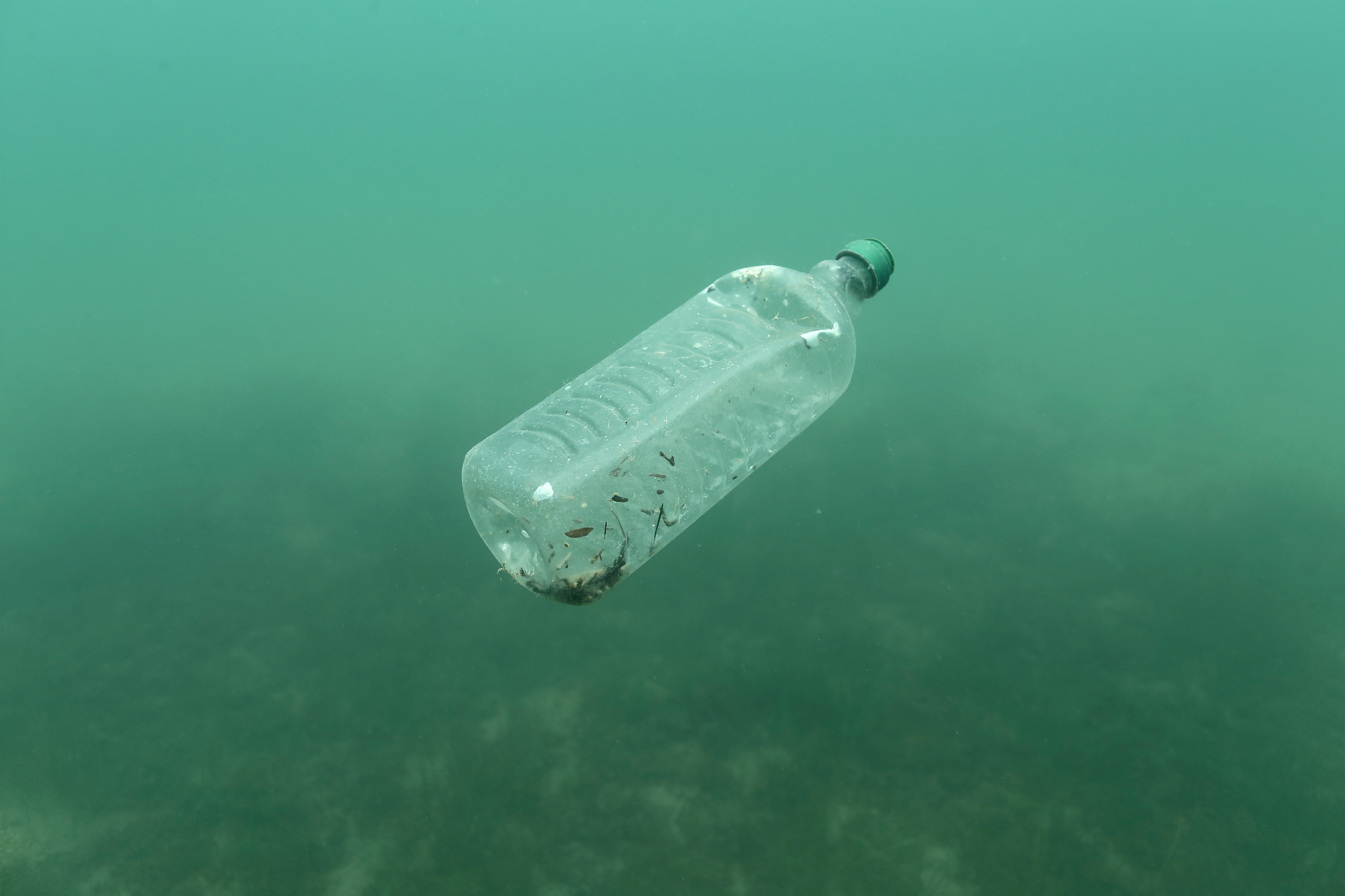 FILE PHOTO: A plastic bottle is seen floating in an Adriatic sea of the island Mljet, Croatia, May 30, 2018. REUTERS/Antonio Bronic/File Photo