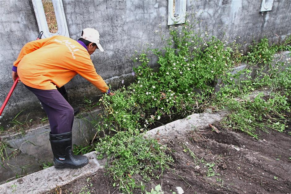 Council workers cleared vegetation from the drains in Taman Merdeka during the gotong royong.