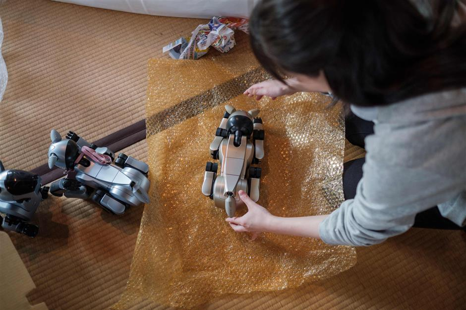 A girl wraps a Sony's pet robot AIBO after a robots' funeral at the Kofukuji temple in Isumi, Chiba on April 26, 2018. More than a hundred robot dogs from different years were sitting next to each other in Japan -- it was not for a tech fair but for their 'funeral'. / AFP PHOTO / Nicolas Datiche