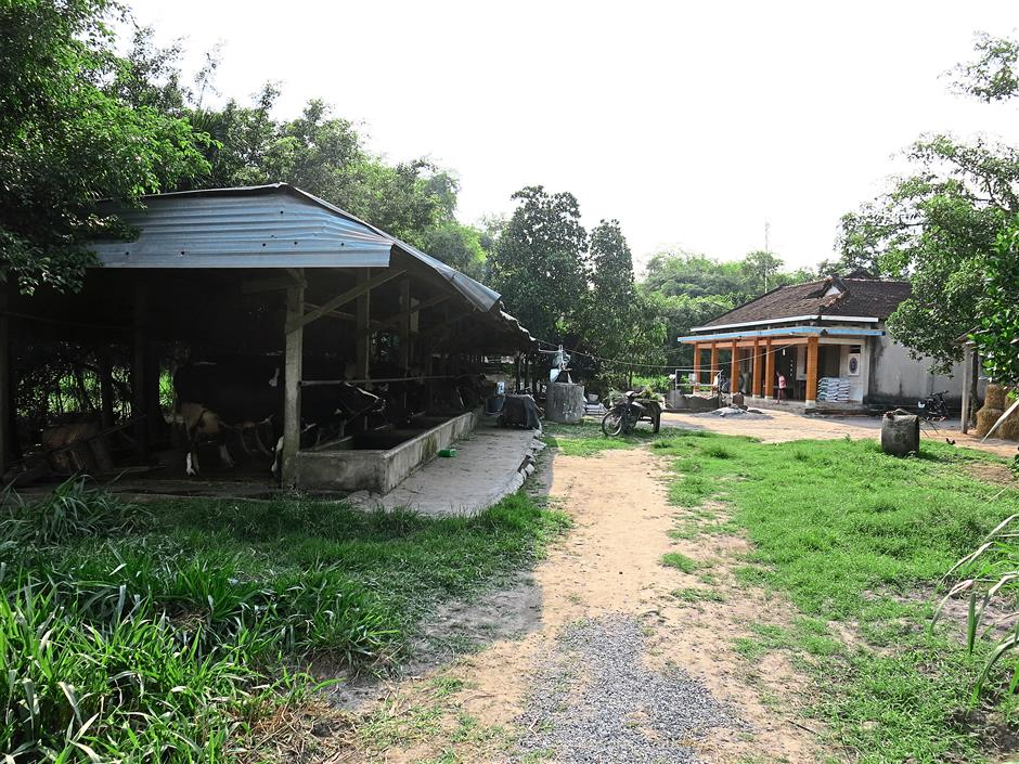 Tran's humble farm in the Long An province is about one-and-a-half hours from Ho Chi Minh City.