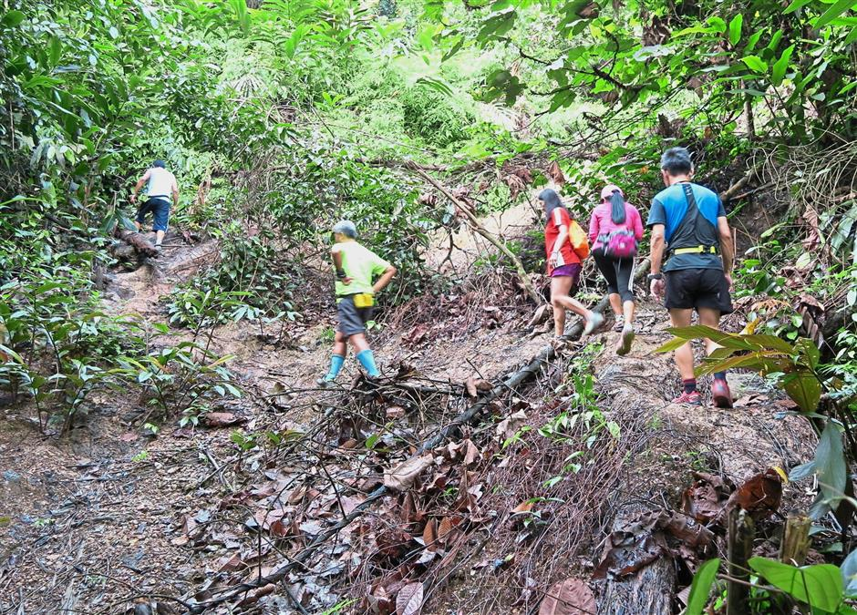 A group of hikers traversing one of the trails in Bukit Beruang, Melaka.