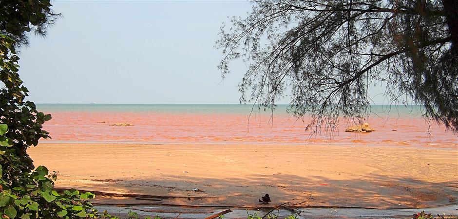 Pollution: The sea near Kuantan Port turning red.
