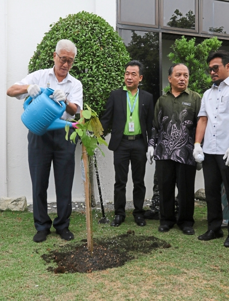 Phee watering the tree which he had earlier planted.