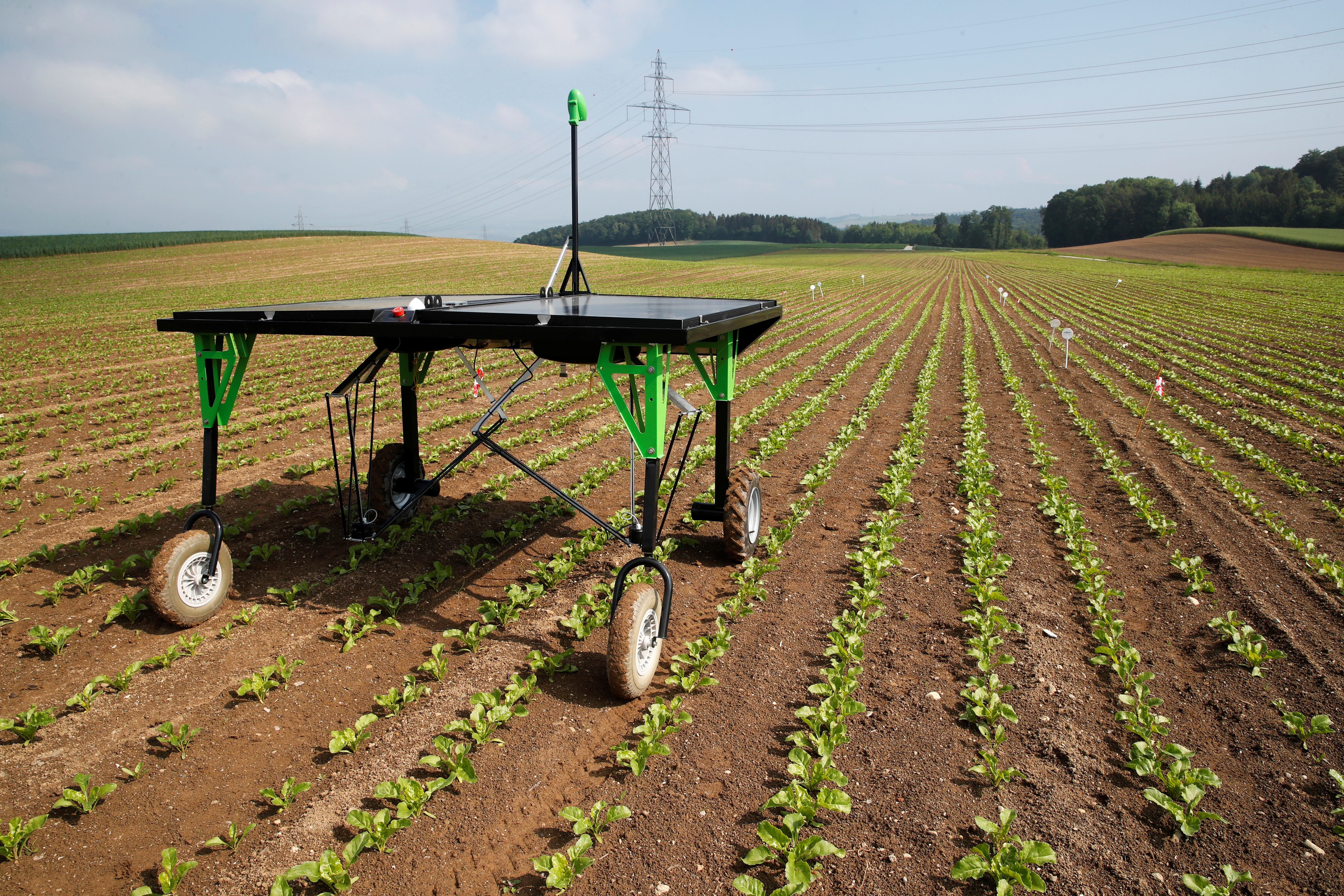 Robots fight weeds in challenge to agrochemical giants   The