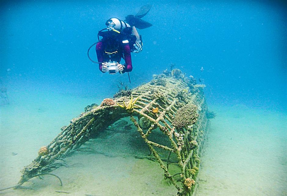 The MNS Biorock structure has given a new lease of life to the corals in Tioman.