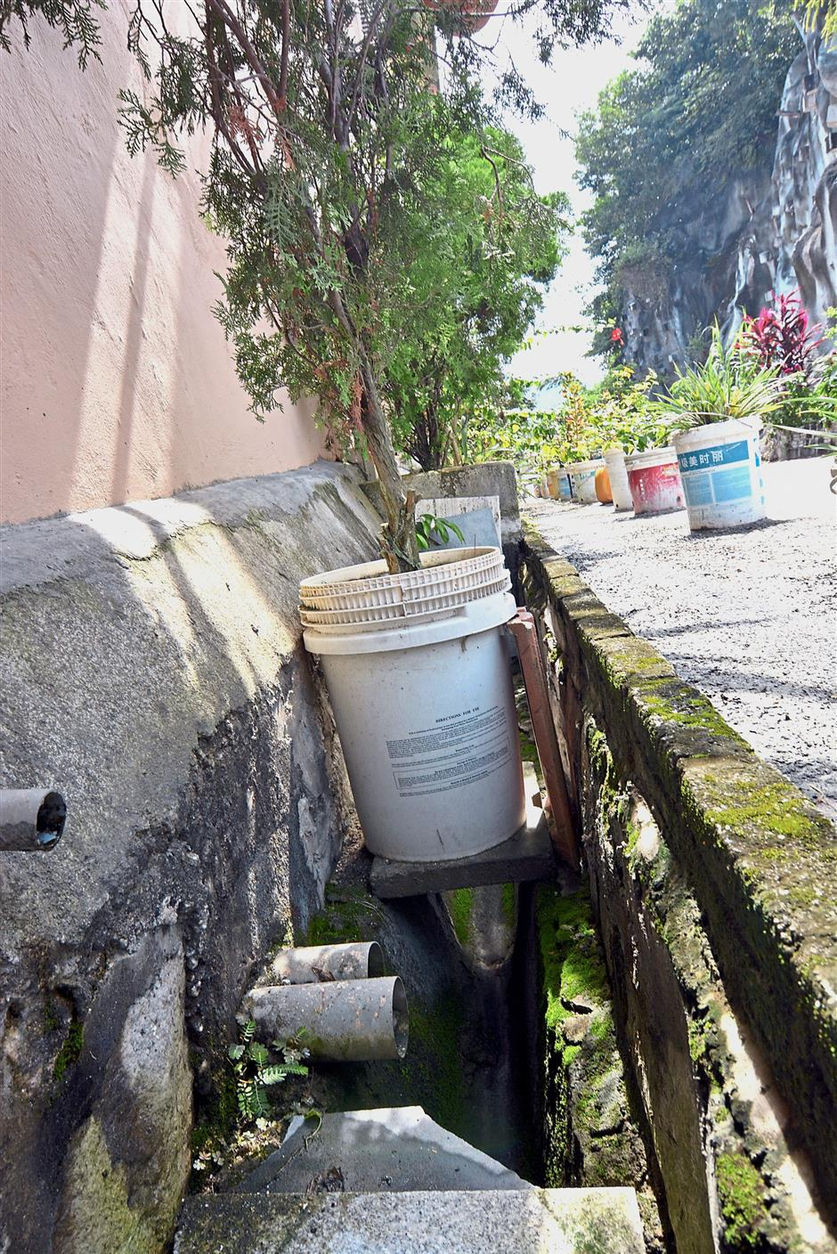 Drains that are blocked with potted plants make it more difficult for cleaning works to take place.