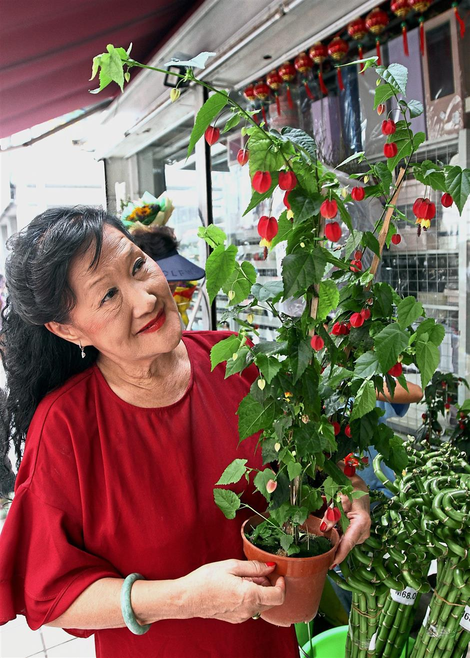 Chan showing the Lantern Blooms that is a new addition at her shop this year.