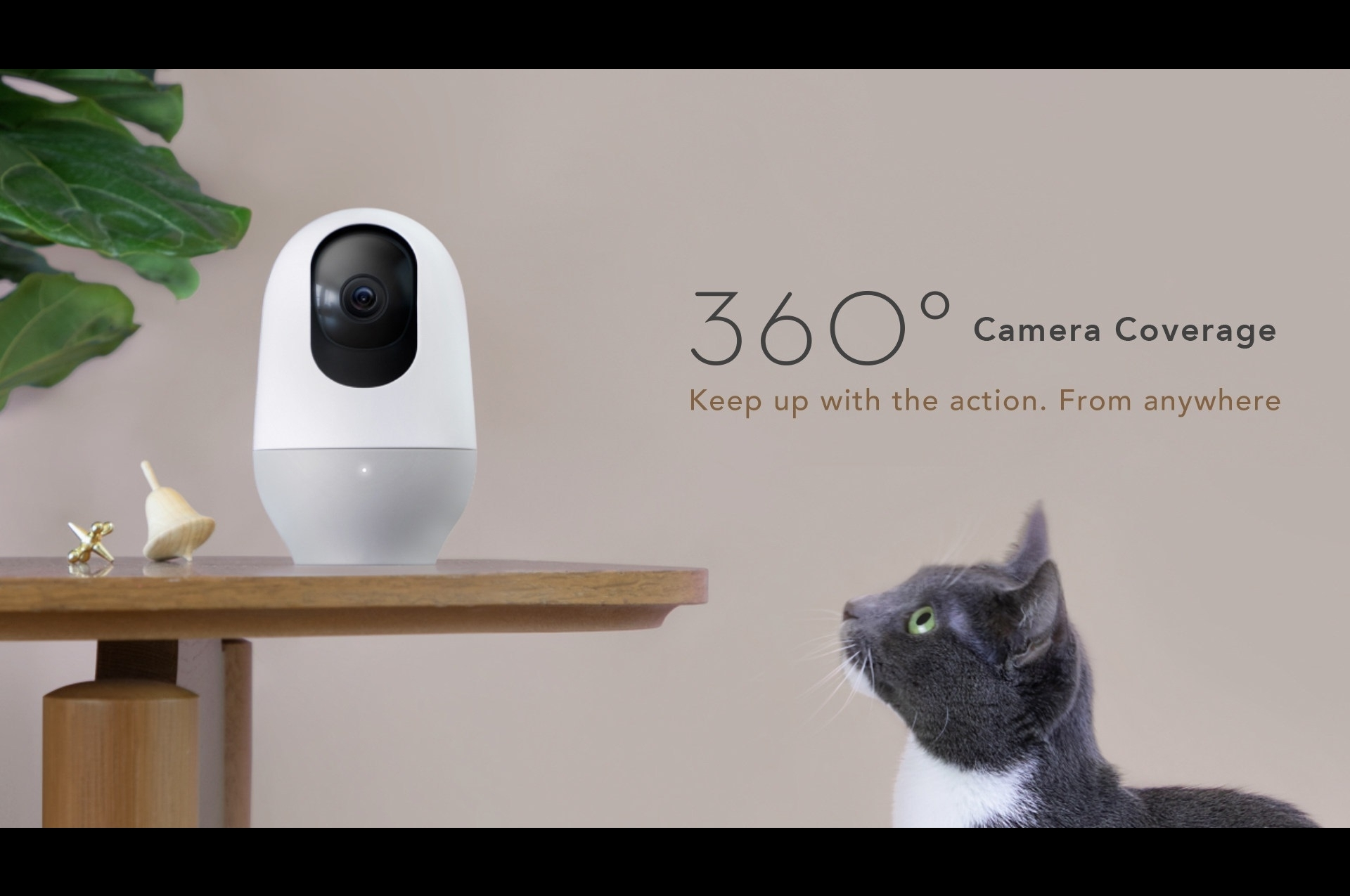 Nooie launches a smart home camera with 360° coverage   The
