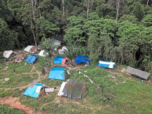 GUA MUSANG, 11 Jun -- Pemandangan udara sekitar keadaan semasa di penempatan sementara suku kaum Batek yang terletak kira-kira tiga kilometer dari kampung asal mereka. Tinjauan Bernama mendapati mereka membina tapak khemah di lokasi yang lebih jauh ke dalam hutan dari penempatan asal di Perkampungan Orang Asli Kuala Koh. Pemerhatian mendapati kira-kira 20 khemah dibina di situ. Namun, apa yang membimbangkan adalah keadaan tempat tinggal mereka dicemari sampah dan sisa makanan. --fotoBERNAMA (2019) HAK CIPTA TERPELIHARA