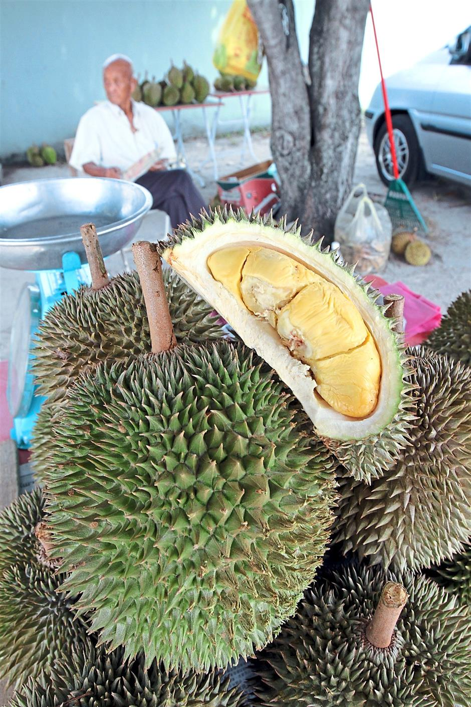 Cloned durians, from the D24 to Musang King varieties, on sale at a stall near the Canning Garden roundabout in Ipoh.