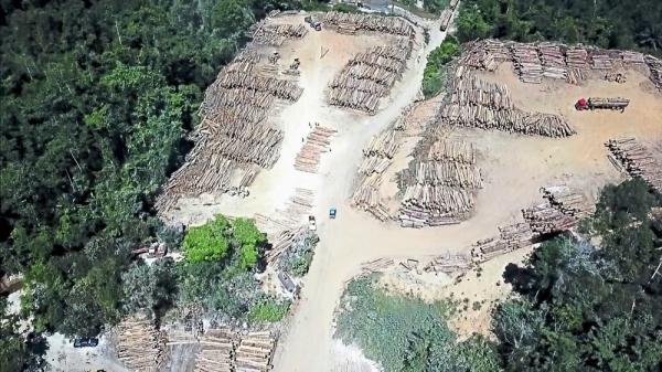 Barren space: An aerial photo showing ongoing logging activity at a logging depot near Ahning Lake in Kuala                      Nerang, Kedah.