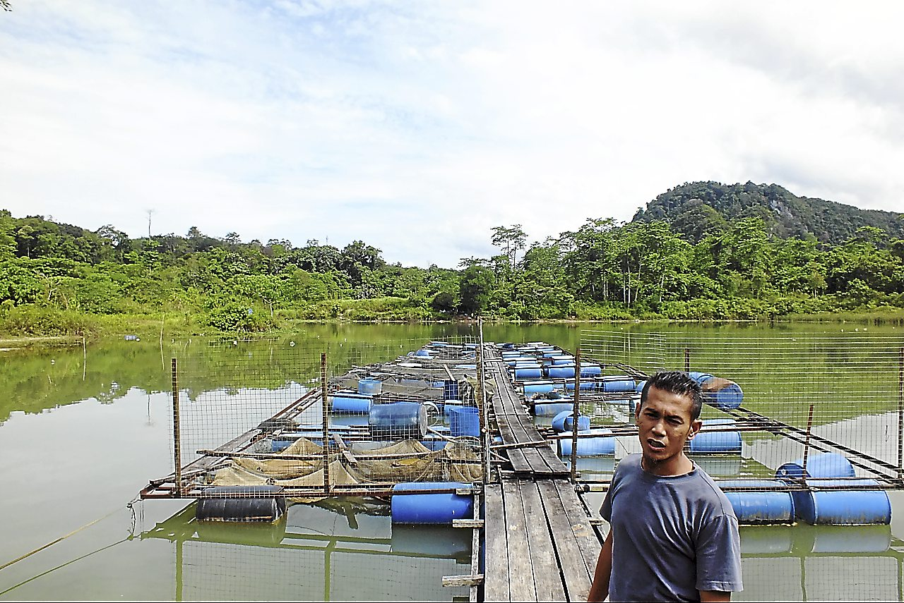 Sabri Zoo's father is among the 15 villagers of Kampung Merapoh, Pahang, who had to abandon their fish farming efforts as the area has been earmarked for a limestone quarry and cement plant.