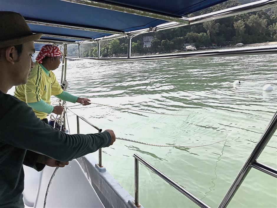 Thorough work: Research assistants combing the sea off Batu Ferringhi grid by grid with a special net designed to trap jellyfish. u2014 Photo courtesy of Cemacs