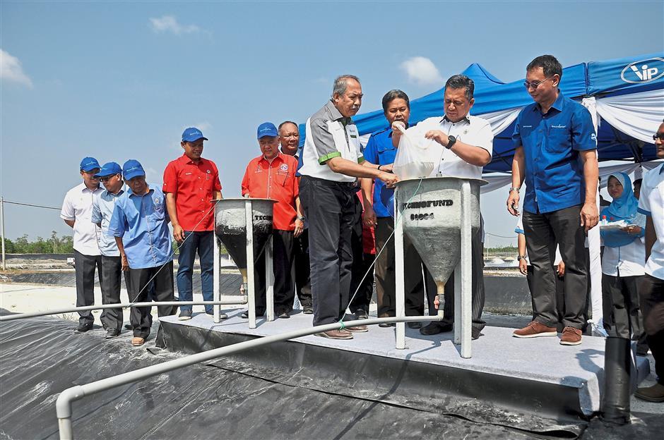 SETIU, 18 Feb -- Menteri Besar Terengganu, Datuk Seri Ahmad Razif Abdul Rahman (dua, kanan) melepaskan benih anak udang ke dalam bekas khas yang disalurkan ke dalam kolam pada Majlis Pelepasan Benih Udang di Taman Akuakultur Udang Bersepadu, Kampung Penarik hari ini.--fotoBERNAMA (2018) HAK CIPTA TERPELIHARA