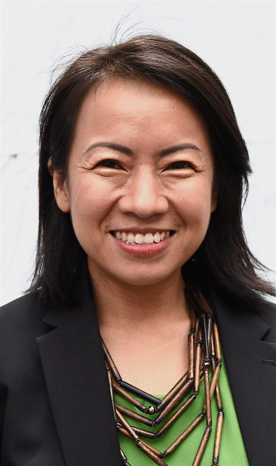Heng (DAP- Berapit) is formerly a reporter writing for Kwong Wah Yit Poh and Guang Ming Daily.