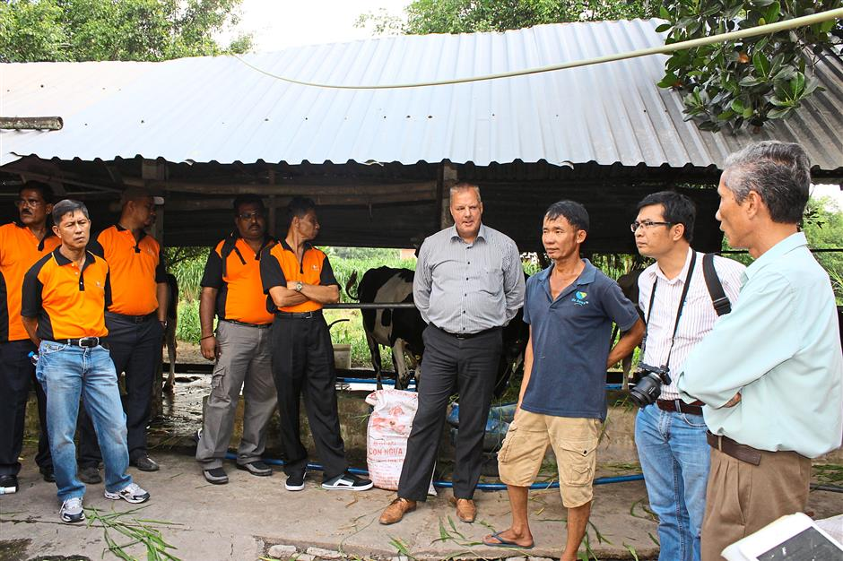 Malaysian dairy farmers asking Tran (in shorts) about the methods he uses to produce 200kg of milk a day.