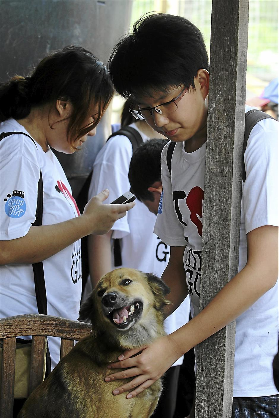 Good Day Out monthly project by Do Good.Volunteer at Furry Friends Farm