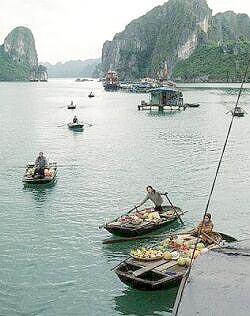 p26boats