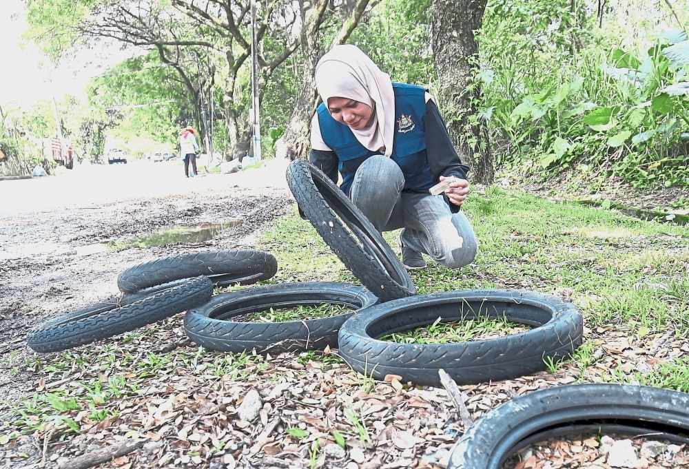 Discarded motorbike tyres are prime breeding areas for mosquitoes.